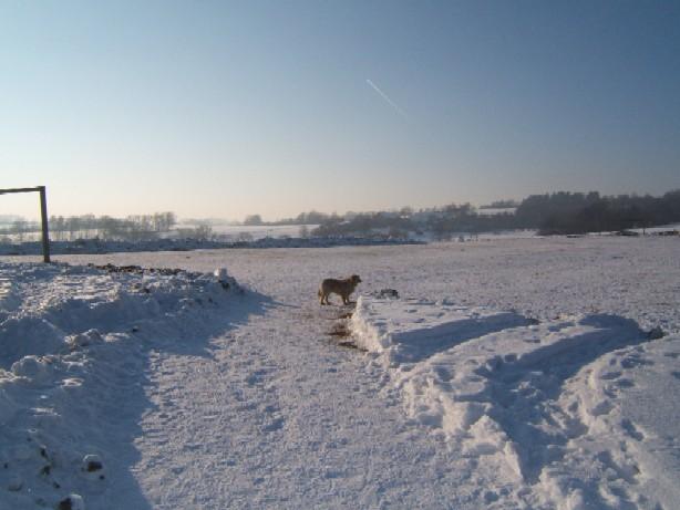 Zimní dovolená v jižních čechách