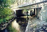 Oprava a statické             zajištění mostu po povodni - Vrbno pod Pradědem