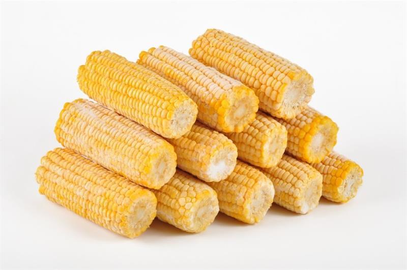 Kukuřičné klasy
