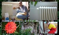 Renovace radiátorů a výmalby bytu malířka Hana Vybíralová s kolegou kytičkou a s úsměvem