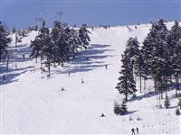 penzion Na Mlýně - Červenohorské sedlo - lyžařská střediska v Jeseníkách