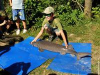 Rybaření - jižní Čechy